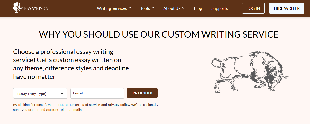 EssayBison Writing Service Review